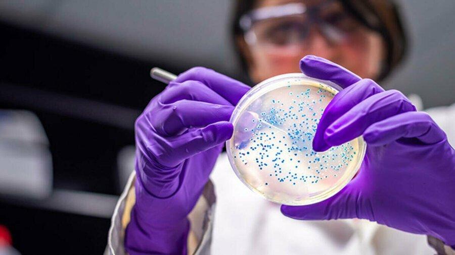 """Çin'den koronavirüs itirafı: """"Bazı örnekleri imha ettik"""""""