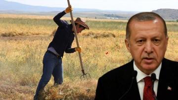 Çiftçiye hazineden ücretsiz arazi verilecek