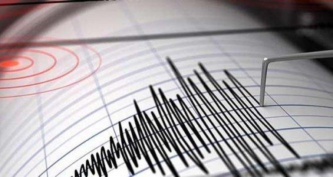 7.4'lük depremin olduğu Alaska'da küçük çaplı tsunami