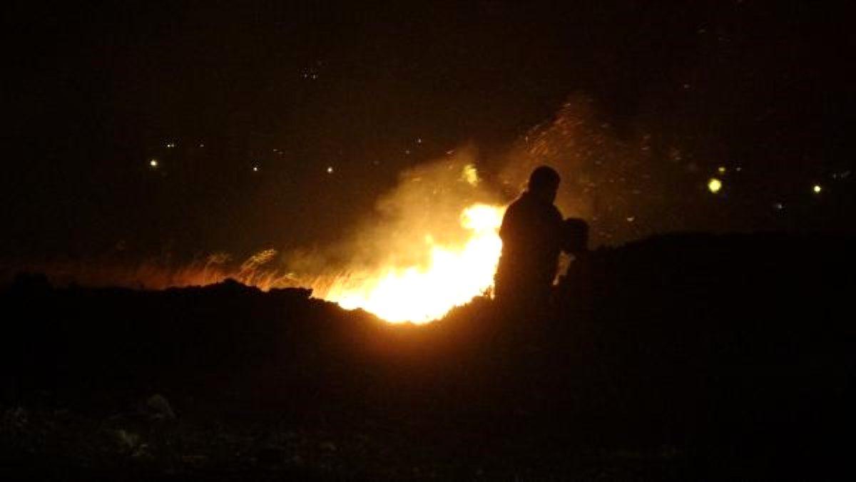Son dakika haberi: Edremit te, sazlık alanda yangın