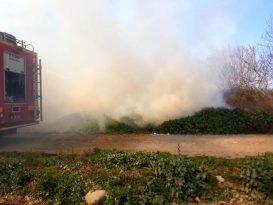 Son dakika: Burhaniye de arazi yangını