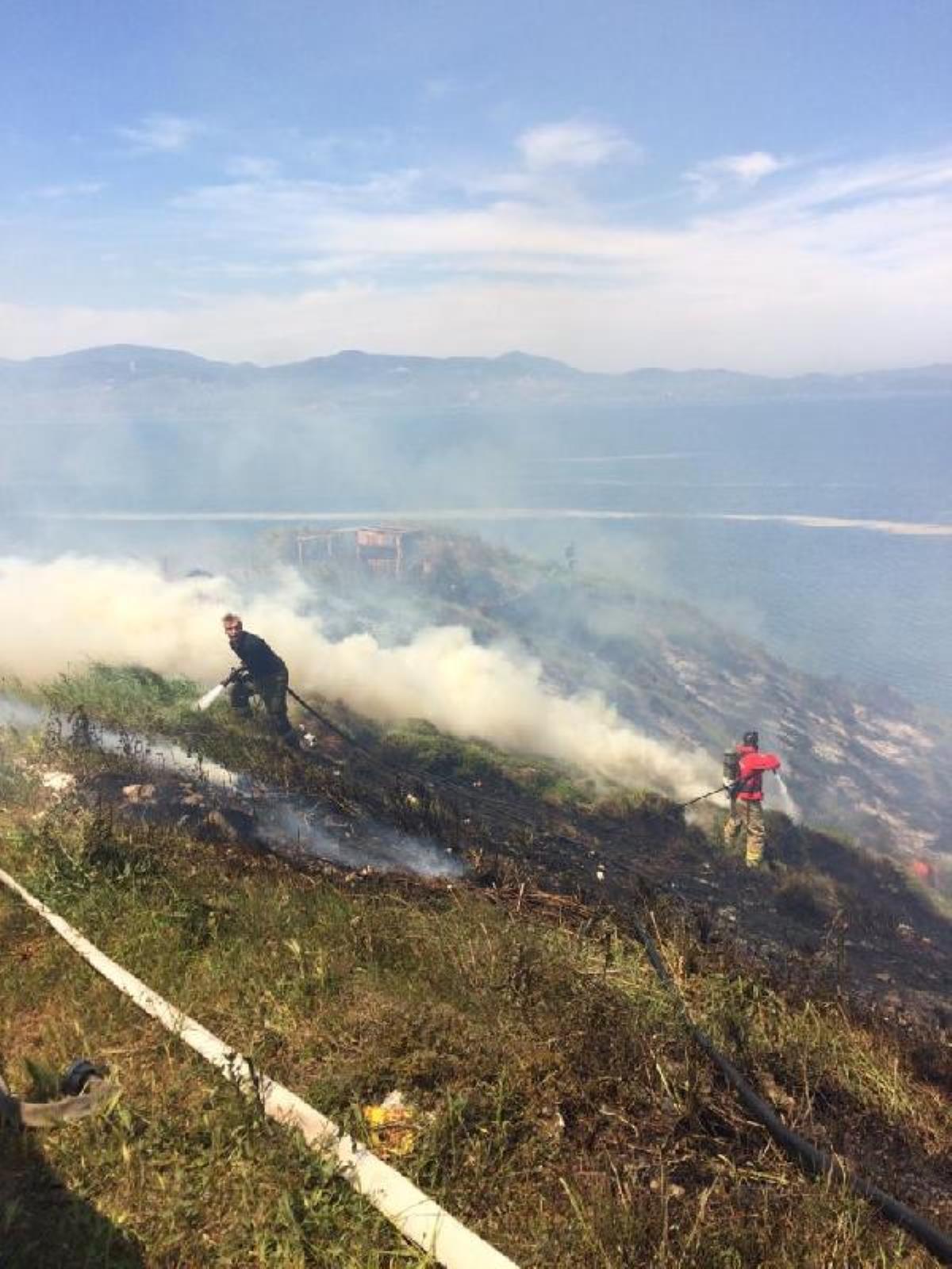 Bandırma'da 1,5 hektarlık alan küle döndü.